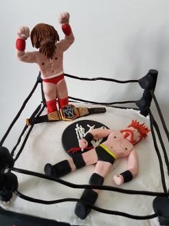 Royal Rumble Wrestling cake Jan 2018 (4)