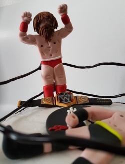 Royal Rumble Wrestling cake Jan 2018 (7)