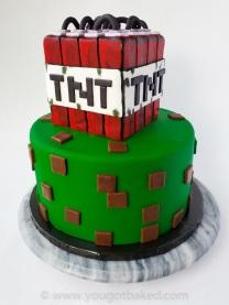 Minecraft BDay Cake - Nov 2019 (2)