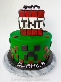 Minecraft BDay Cake - Nov 2019 (4)