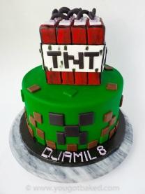 Minecraft BDay Cake - Nov 2019 (5)